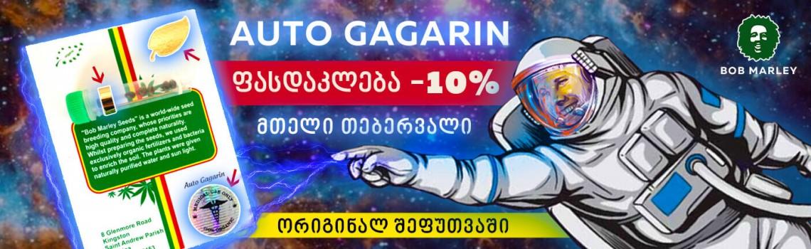 gagarin 2x