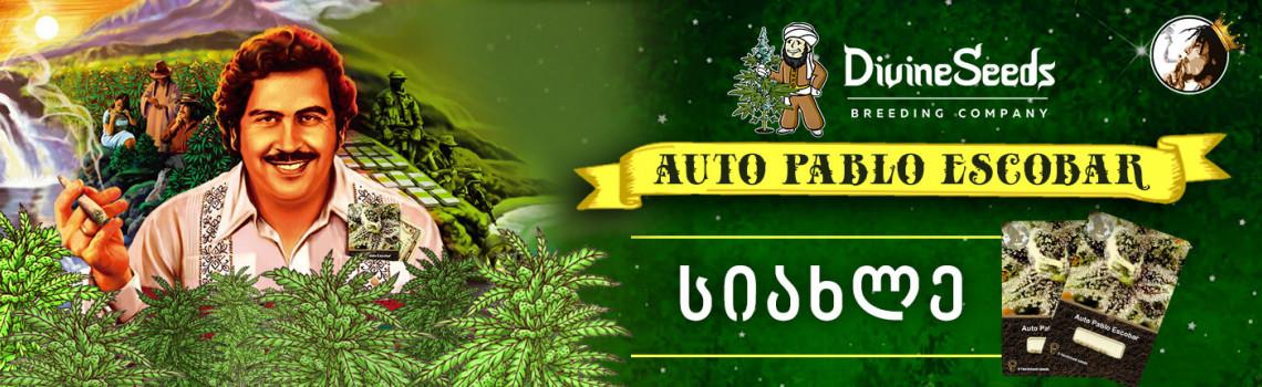 AutoPablo