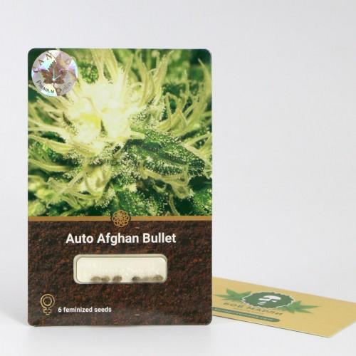 თესლი Auto Afghan Bullet