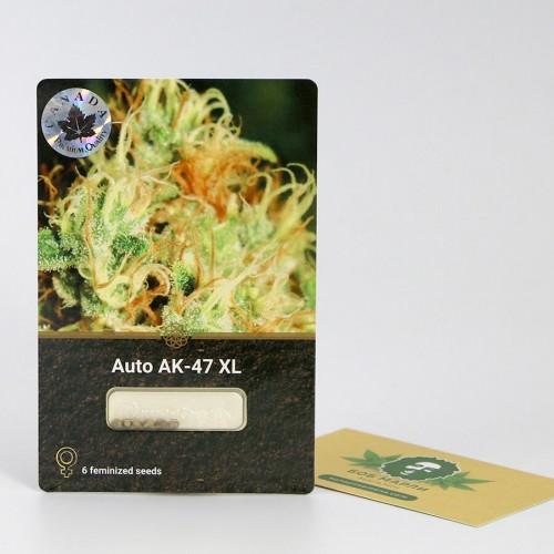 თესლი Auto AK-47 XL