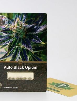 Auto Black Opium