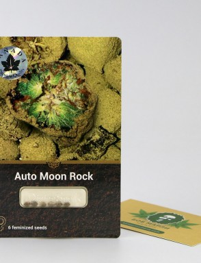 Auto Moon Rock