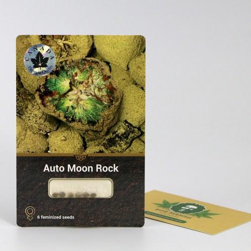 თესლი Auto Moon Rock