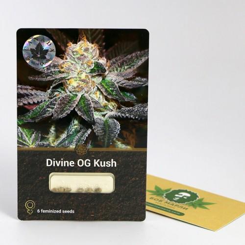 თესლი Divine OG Kush