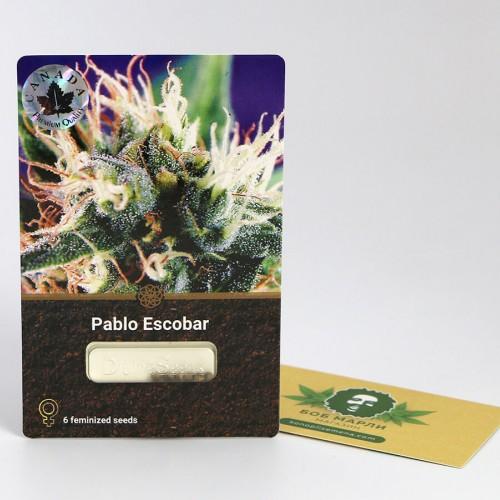 თესლი Pablo Escobar