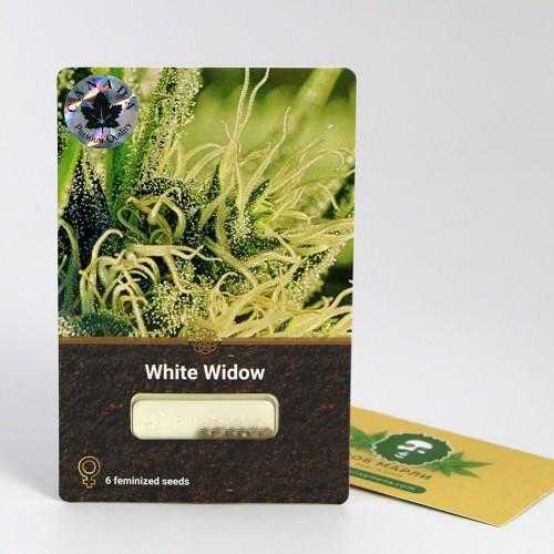 თესლი White Widow