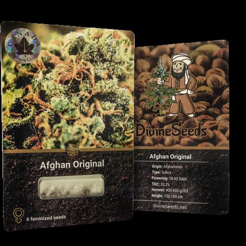 ყიდვა თესლი Afghan Original
