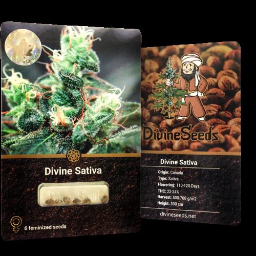 ყიდვა თესლი Divine Sativa