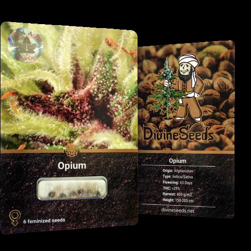 ყიდვა თესლი Opium