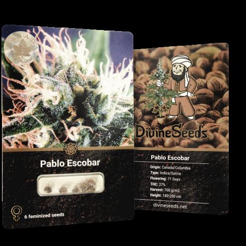ყიდვა თესლი Pablo Escobar
